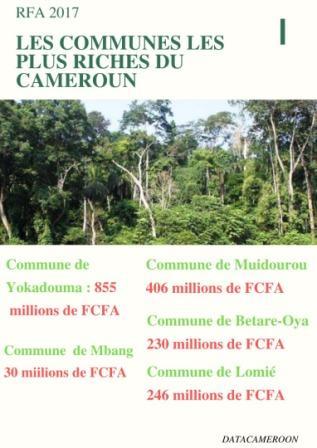 Gouvernance locale : Où vont les milliards de la redevances forestières à l'Est ?