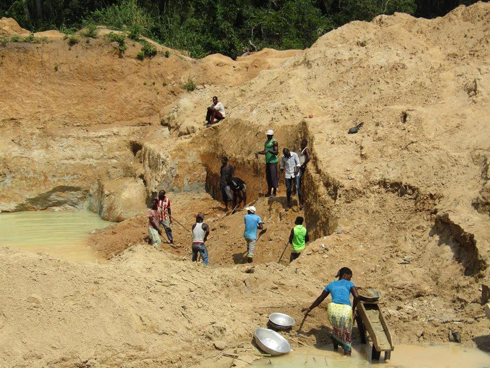 Exploitation minière : 03 pachydermes décédés à moins de six mois à l'Est