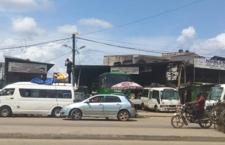 Transport : Des agences de voyage récemment suspendues toujours en activité