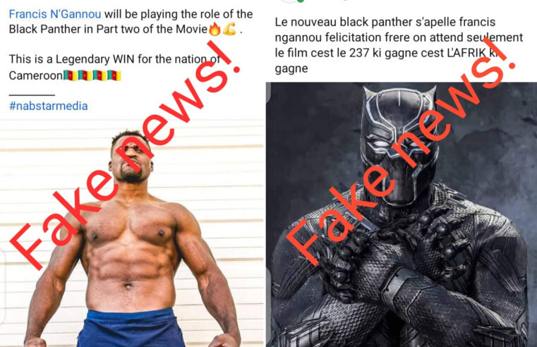 Fact-checking: No, Francis Ngannou is not playing Black Panther movie role