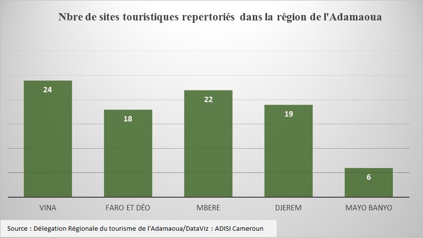 Adamaoua : Paralysé par la Covid-19, le tourisme peine à se relever