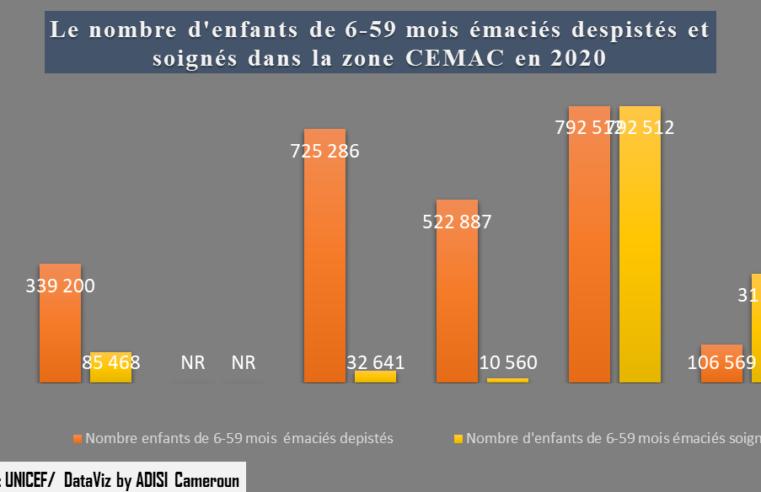 Nutrition : Près de 339 200 enfants de 6-59 mois  émaciés dépistés  au Cameroun en 2020