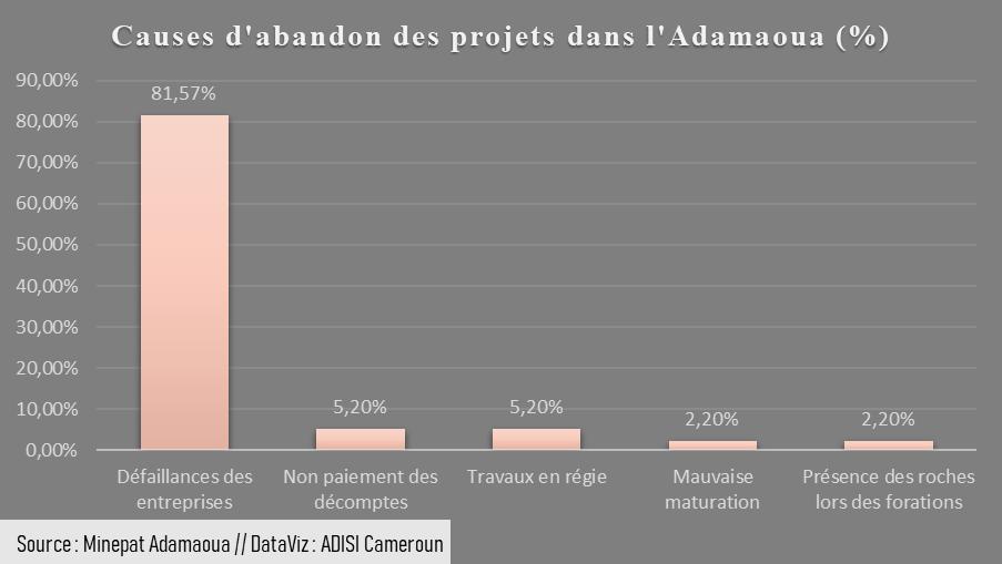 Adamaoua : 38 projets socioéconomiques abandonnés entre 2018 et 2020